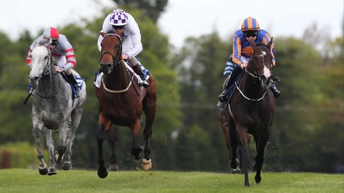Battle Of Marengo (right) beats Loch Garman (centre) and Little White Cloud