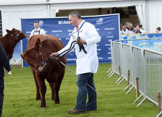 BALMORAL SHOW IS JUST A-MAZE-ING