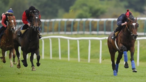 Telescope (r) having his racecourse gallop at Lingfield on Wednesday