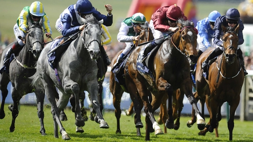 Just The Judge (maroon) finished a close second to Sky Lantern in the Newmarket 1000 Guineas