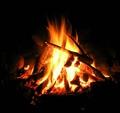 Campfire Companions
