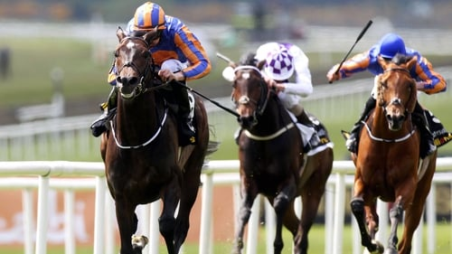 Magician is a doubt for the St James's Palace Stakes