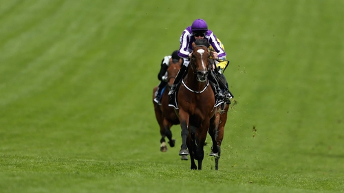 Joseph O'Brien pushes St Nicholas Abbey clear in the closing stages