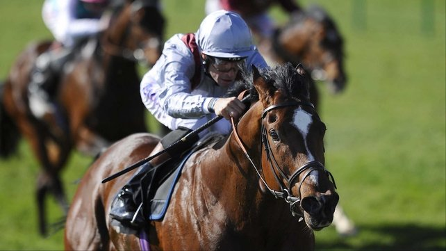 Toronado was strongly fancied for the 2000 Guineas, but he managed only fourth behind Dawn Approach