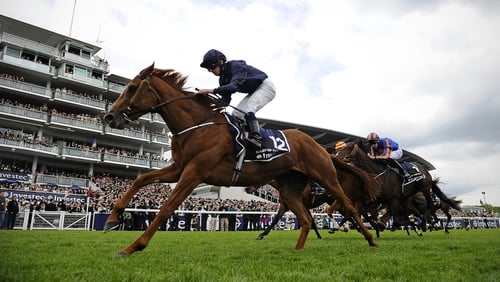 Ruler Of The World is scheduled to make his next start in the Irish Derby at the Curragh