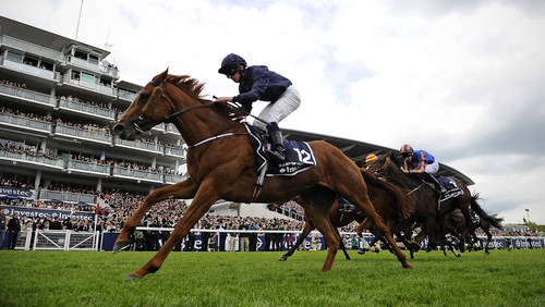 Aidan O'Brien's Ruler of the World has already won a classic this season, the English Derby
