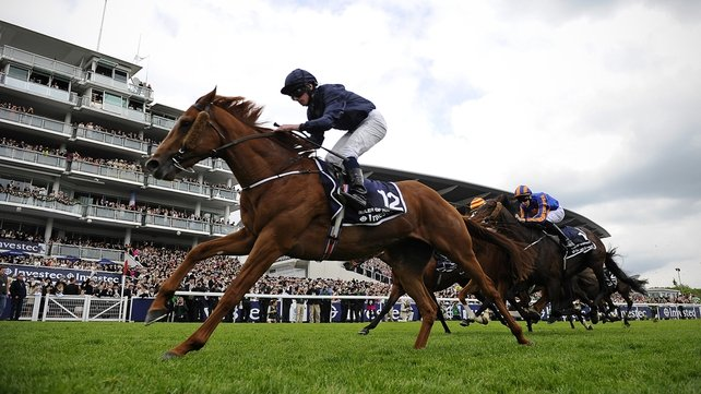 Ruler Of The World will head to the Curragh at the end of the month