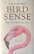 The Six Senses in Birds
