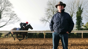 Noel Meade is considering sending Waxies Dargle to Ascot