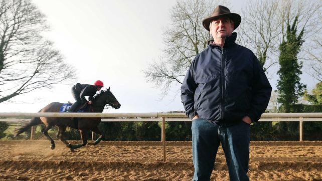 Noel Meade eyes step up in class for Very Wood and Apache Stronghold
