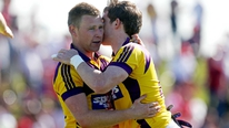Brian Carthy reports on Wexford's 2-13 to 1-15 win over Louth.