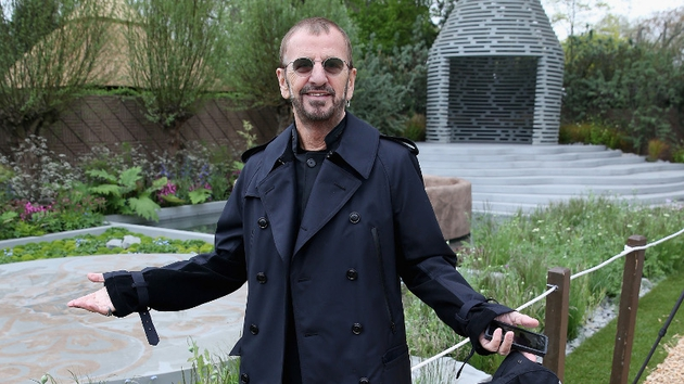 Ringo in a garden. No sign of an octopus though