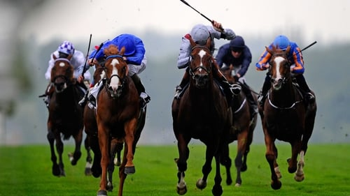 Dawn Approach is is even money with most firms to land the most prestigious race at Glorious Goodwood
