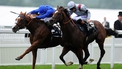 Irish rule roost at Ascot