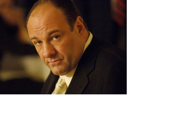 James Gandolfini Dies Suddenly