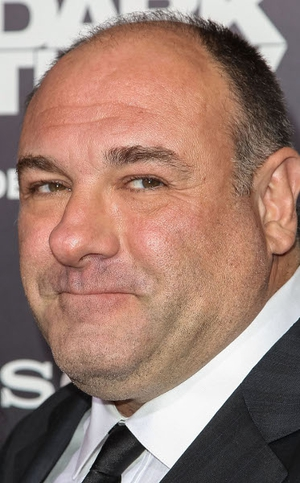 James Gandolfini, best known for his role in the The Sopranos, died at the age of 51 in Italy