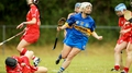Camogie Wrap: Cats edge out Galway