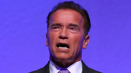 Arnold Schwarzenegger has landed the part of a doting father in new zombie movie Maggie
