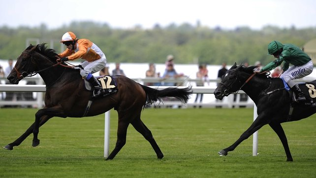 Most Improved was an impressive winner of the 2012 St James' Palace Stakes when trained by Brian Meehan