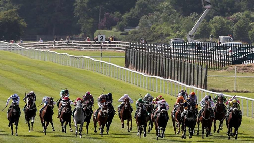 Sunday is Moyglare Stud Stakes day at the Curragh