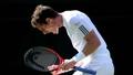 Murray makes second Wimbledon final
