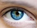 Eye Am What I Eat
