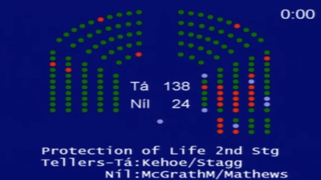 Fianna Fáil TDs voted against the measure with 13 rejecting the bill and six in favour