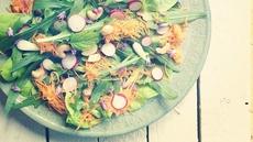 Super Foods of Summer
