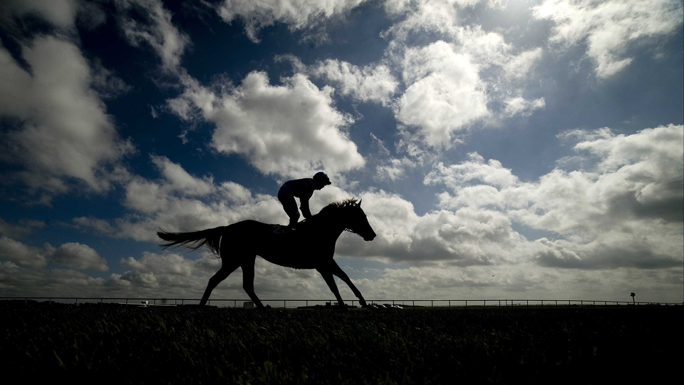 A runner makes its way to the start of the Dubai Duty Free Irish Derby at the at Curragh racecourse in Kildare