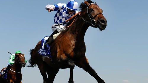 Al Kazeem won his only previous start in Ireland when landing the Tattersalls Gold Cup at the Curragh