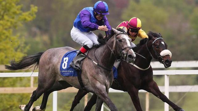 Sacred Aspect has run at six furlongs in three starts so far