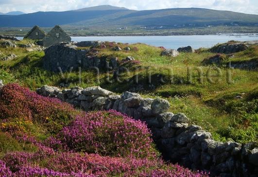 Áine Ní Chonghaile, ón gcomhlacht Europus & Pádraic Ó Guairim, as Ruisín na Mainíoch.