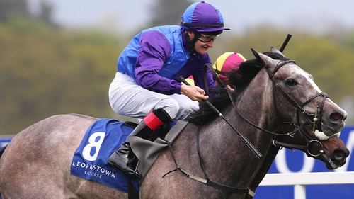 Shane Foley was again victorious on Sacred Aspect