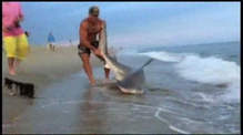 Elliot Sundal wrestles a sandbar shark on a Nantucket beach