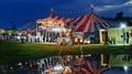 Attitudes to the circus
