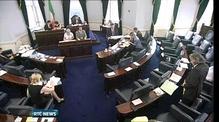 Government wins crucial Seanad vote on abolition referendum legislation
