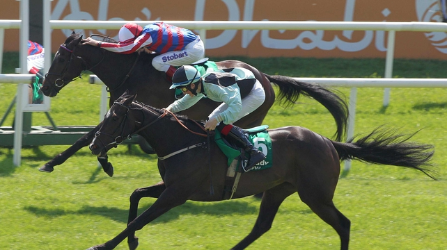 Midnight Soprano (near side) is lined up for the Curragh in August