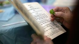 An Chaisc: An Irish Passover