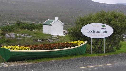 John Mac Suibhne agus Róise Ní Cheallacháin
