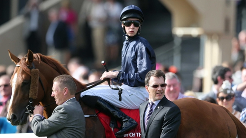 Ruler Of The World is favourite for Saturday's World Cup in Dubai