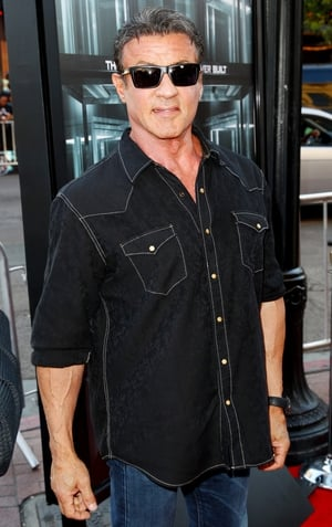 Sylvester Stallone is set to reprise his role as Rocky in a spin-off film