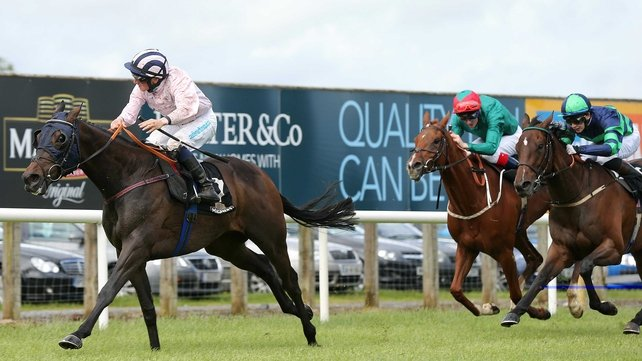 Sir Ector won the Ulster Derby at Down Royal in June