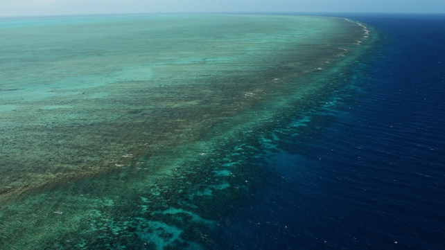 The US Navy will search the Great Barrier Reef after it dropped unarmed bombs on the marine park