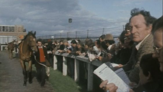 Galway Races (1977)