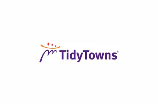 Tidy Towns Judge