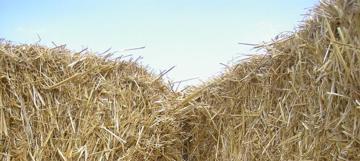 Slane Straw Bale