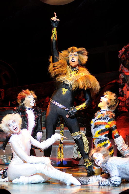 Cats Comes To The Bord Gais Energy Theatre