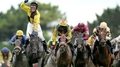 Glory glory Missunited for Winters in Hurdle