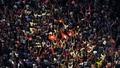 Arab Spring