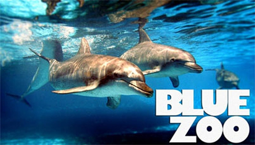 Blue Zoo will air on RTÉ Two in 2014
